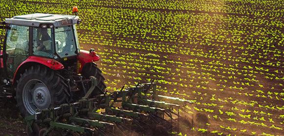 Hytera Farming